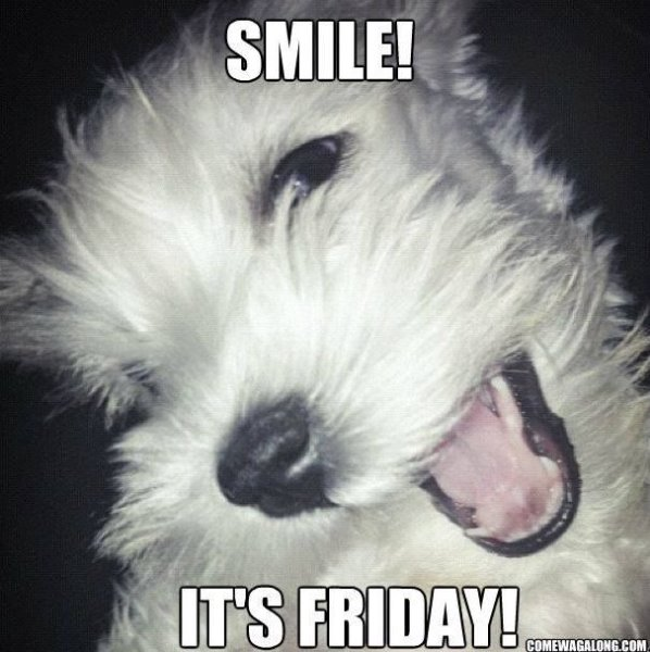 264850-Smile-Its-Friday.jpg