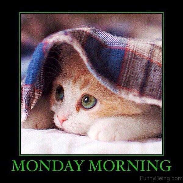 Monday-Morning.jpg