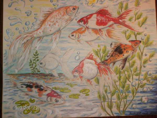 goldfishart.jpg